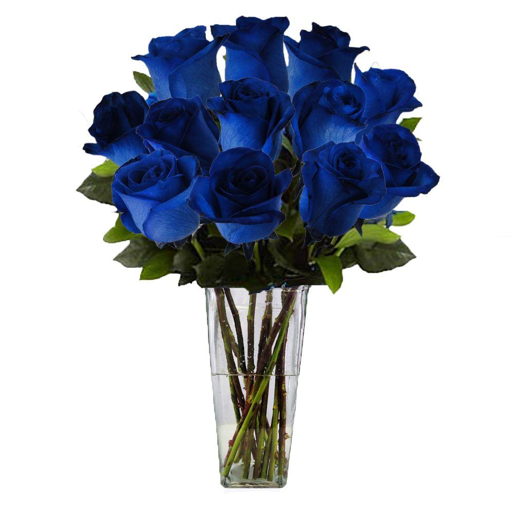 The Ultimate Bouquet Gorgeous Blue Rose Bouquet in Clear Vase (12 ...