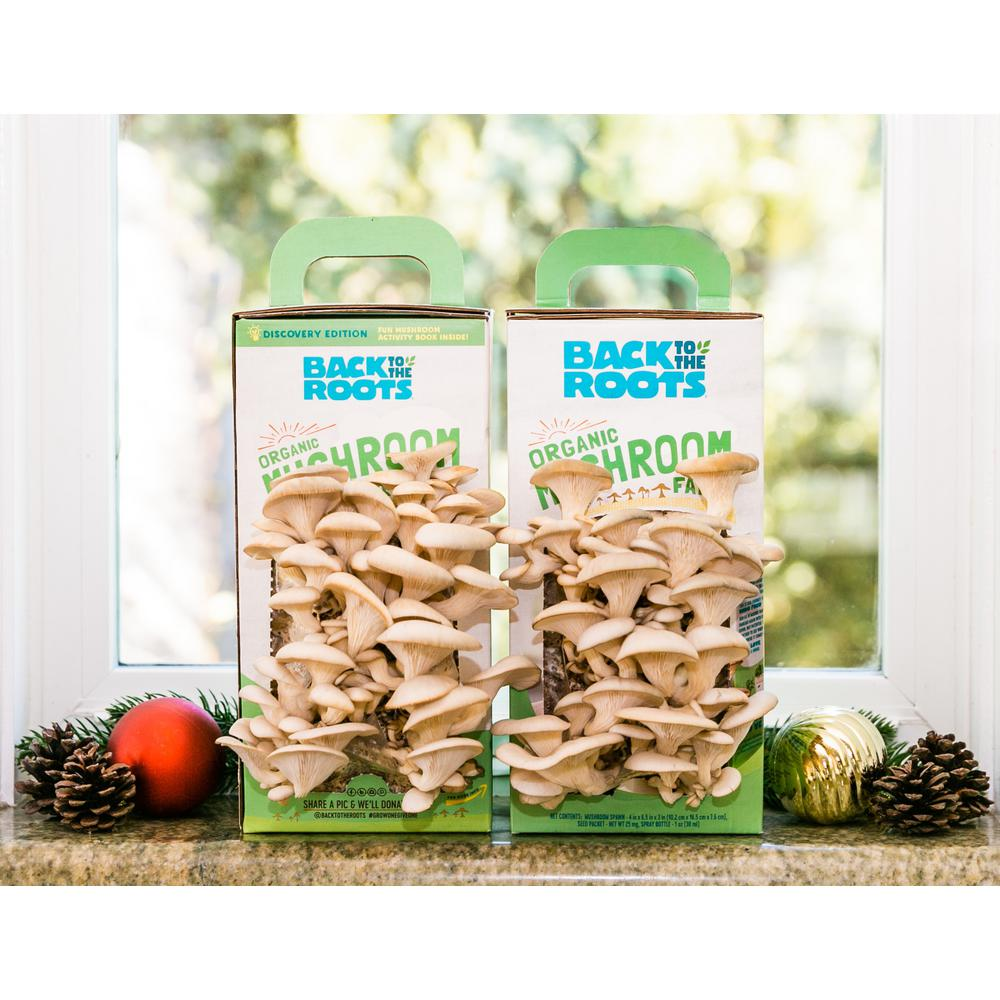 Back to the Roots Organic Mushroom Grow Kit -Discovery Edition (2-Pack)