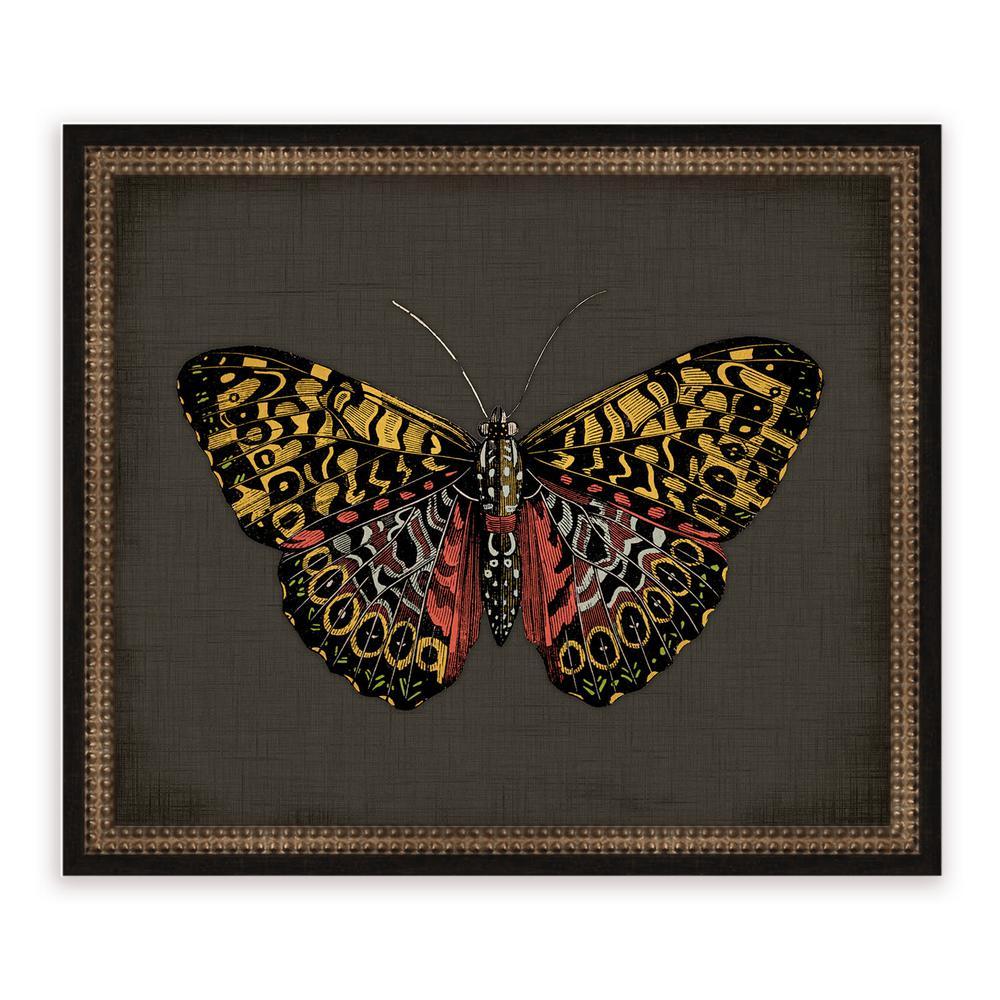 21 in. x 18 in. ''Butterflies on Black IV'' Framed Giclee