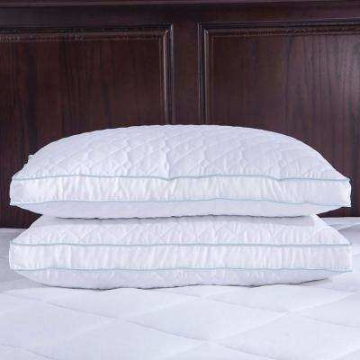 Quilted Goose Feather and Down Pillow with Gusset, Twin Pack King in White