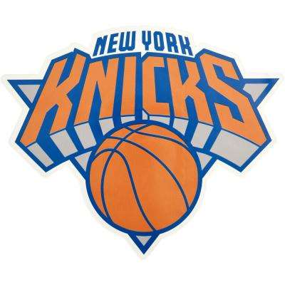 NBA New York Knicks Outdoor Logo Graphic- Small