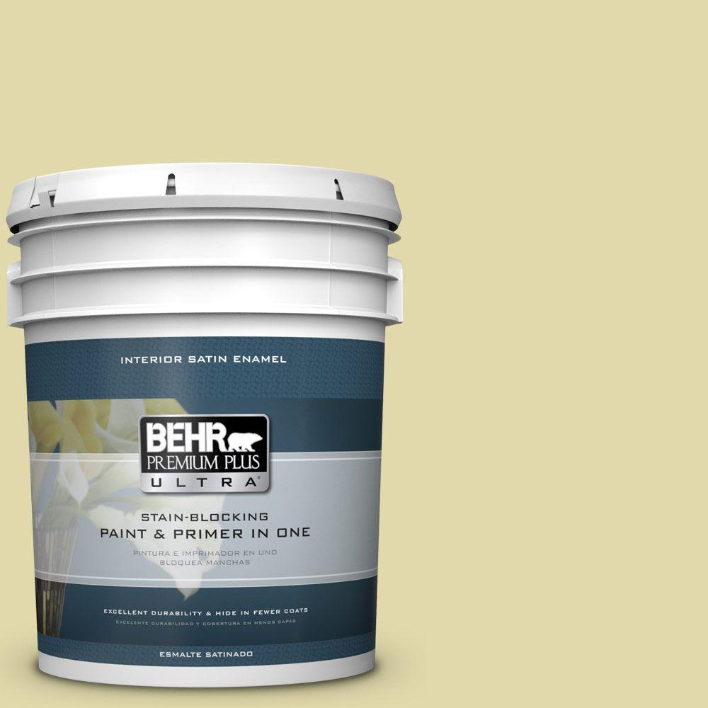 5 gal. #HDC-CT-27A Fresh Willow Satin Enamel Interior Paint