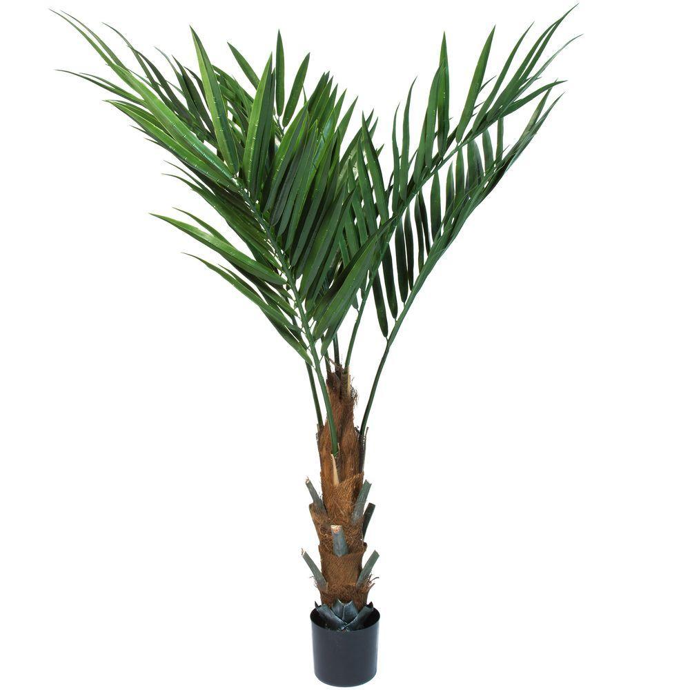 Pure Garden 60 In. Kentia Palm Tree