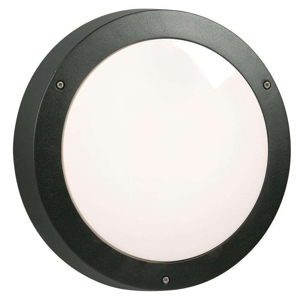 Filament Design Negron 1-Light Outdoor Black Wall Light