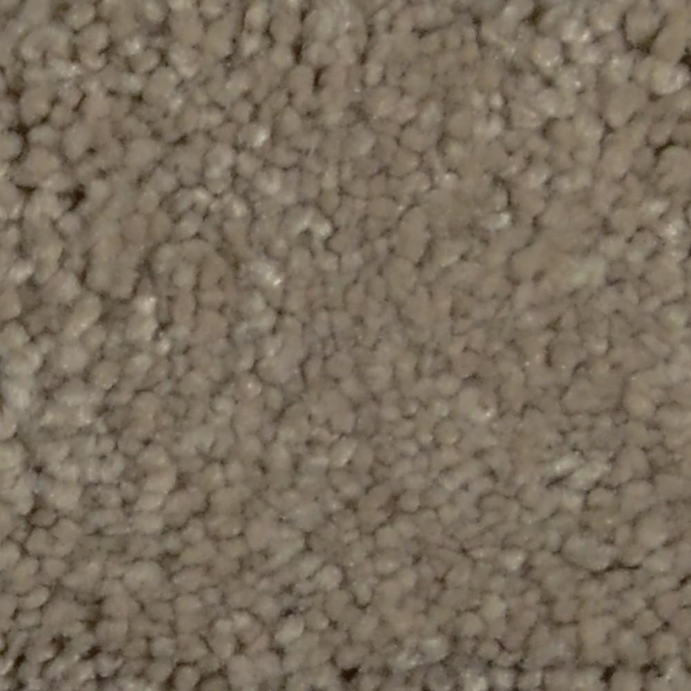 Carpet Sample - Sun Rise I - Color Dockside Texture 8 in. x 8 in.