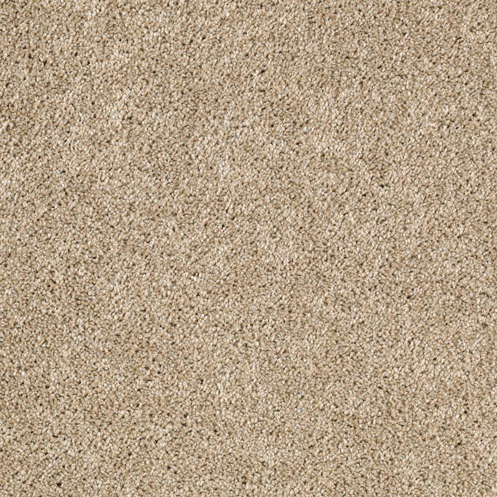 Gorrono Ranch II - Color Mysterious Texture 12 ft. Carpet