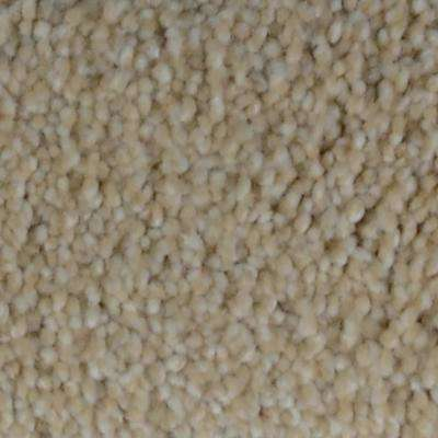 Carpet Sample   Alamo Hills I   Color Legacy Texture 8 In. X 8 In