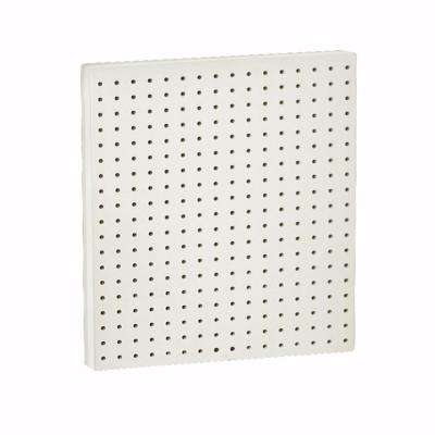 24 in. H x 24 in. W Pegboard Panel (2- Pack) Clear