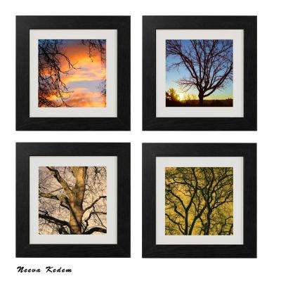 "Four 10 in. x 10 in. ""Touch of Nature"" by Neeva Kedem Framed Printed Wall Art"