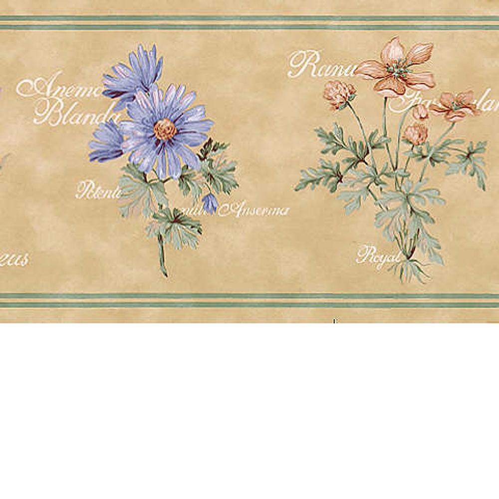 Flower Name Wallpaper Border-499B49906 - The Home Depot