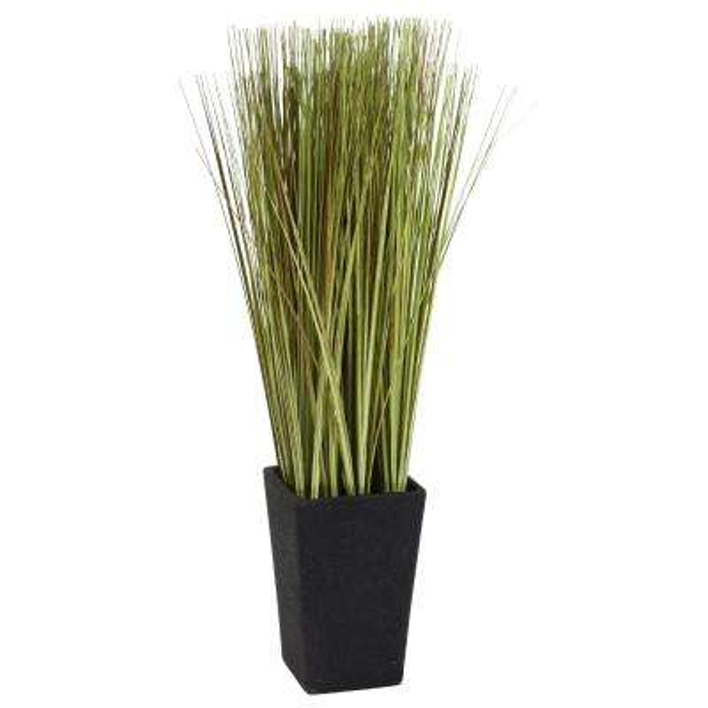24 in. Onion Grass