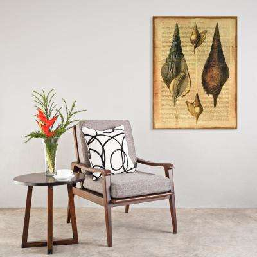 "36 in. x 27 in. ""Antiquarian Shells 2"" Digital Print on Fresco Jute Wall Art"