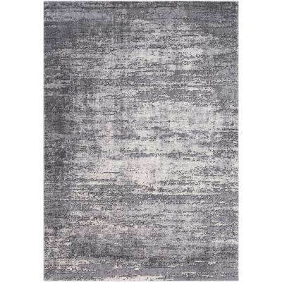Durant Gray 2 ft. x 3 ft. Area Rug