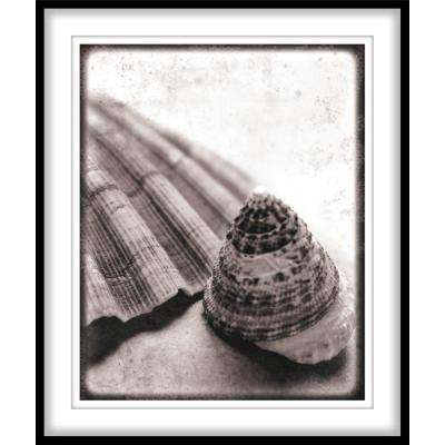"""9.75 in. x 11.75 in. """"Gifts from the Sea""""Framed Wall Art"""