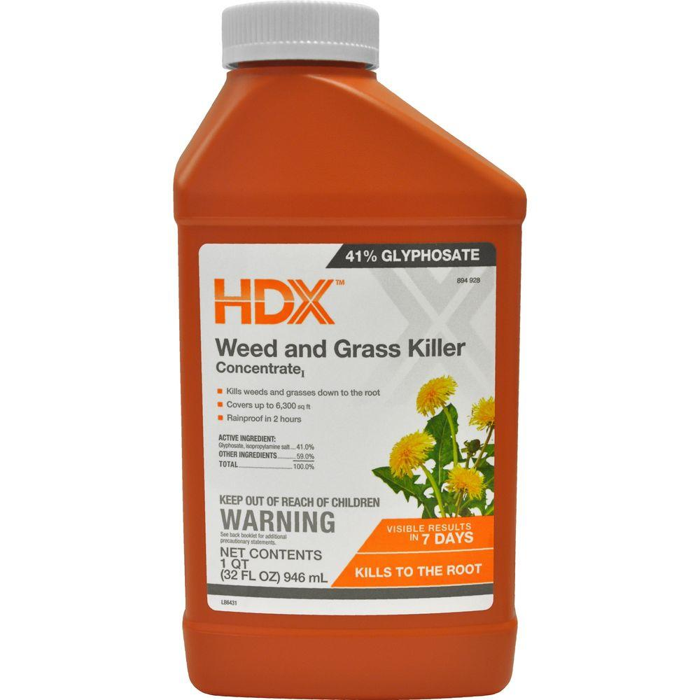 Spraying weeds in flower beds - Weed And Grass Killer Concentrate 77740 The Home Depot