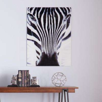 "32 in. H x 24 in. W ""The Zebra"" Glass Wall Art"