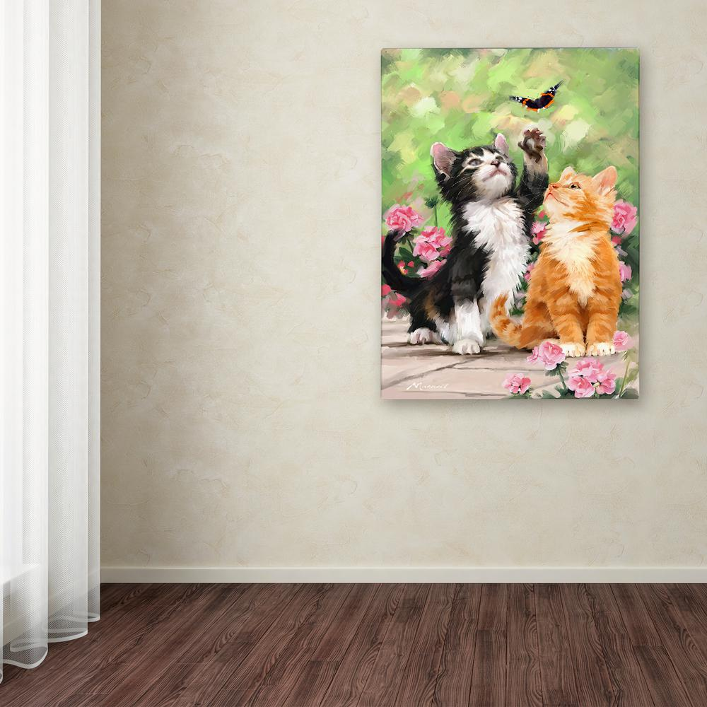 Trademark Fine Art 32 In X 24 In Kittens By The Macneil Studio