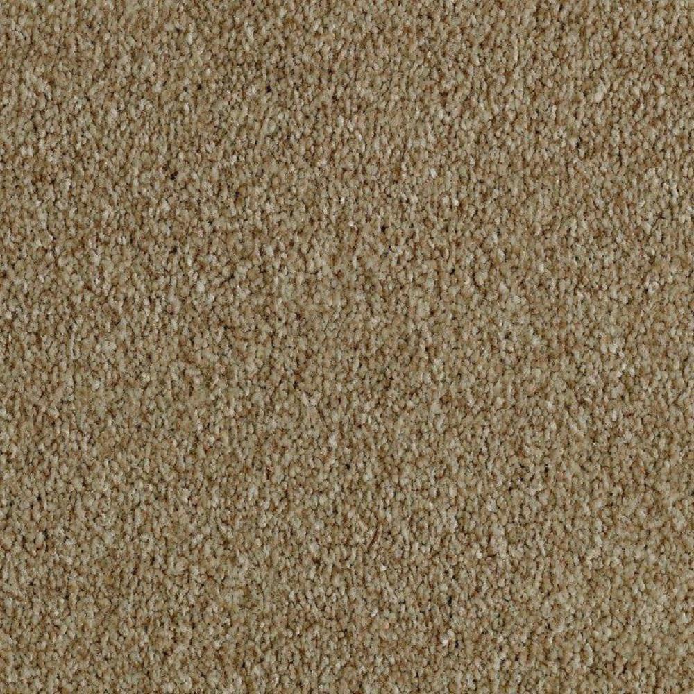 Phenomenal II - Color Americana Texture 12 ft. Carpet