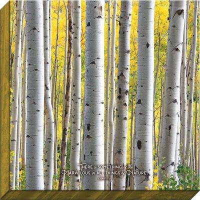 """Nature Made """"Something of the Marvelous Birch"""" By Carpentree Canvas"""