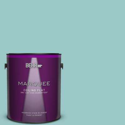 1 gal. #MQ6-08 Aquifer One-Coat Hide Ceiling Flat Interior Paint and Primer in One