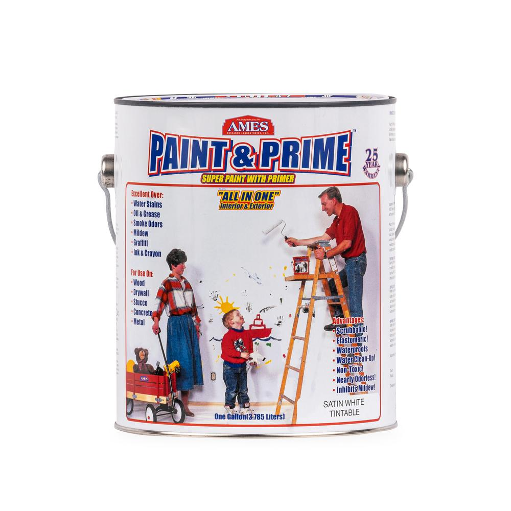 Ames Paint And Prime 1 Gal All In One