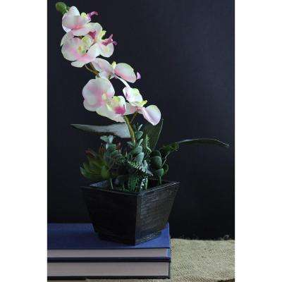 13 in. Artificial Orchid with Succulent Plants in Pot