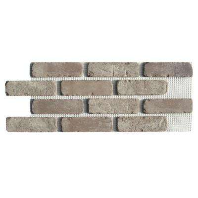 Brickweb Rushmore 28 in. x 10-1/2 in. x 1/2 in. Clay Thin Brick Flats 8.7 sq. ft. (5-Box)