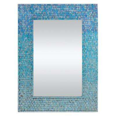 Catarina 23 in. x 31 in. Framed Wall Mirror