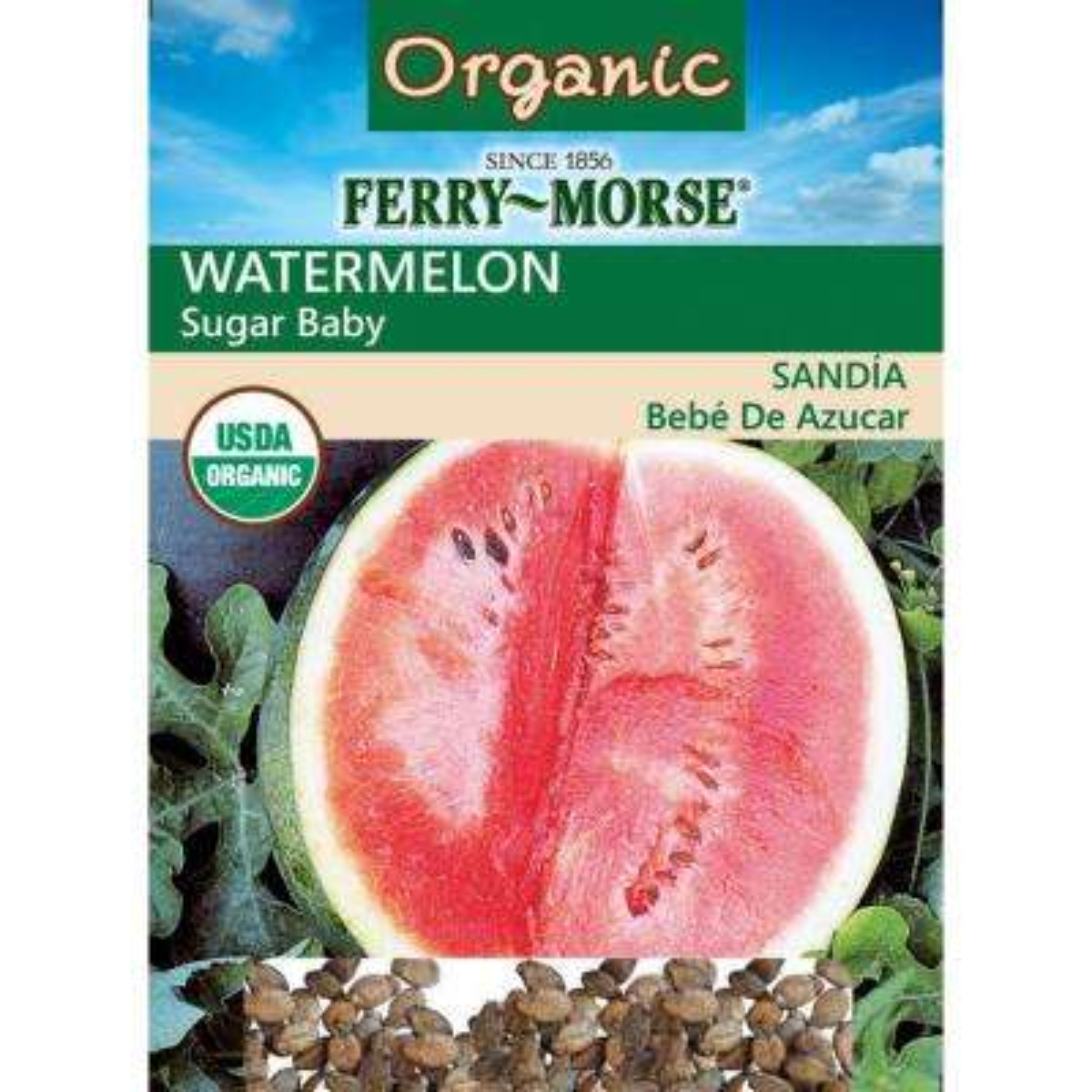 Watermelon Sugar Baby Seeds