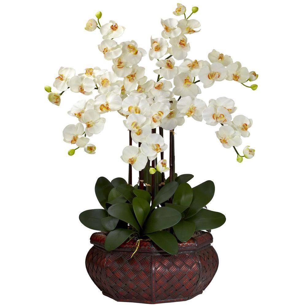 30 in. H Cream Large Phalaenopsis Silk Flower Arrangement