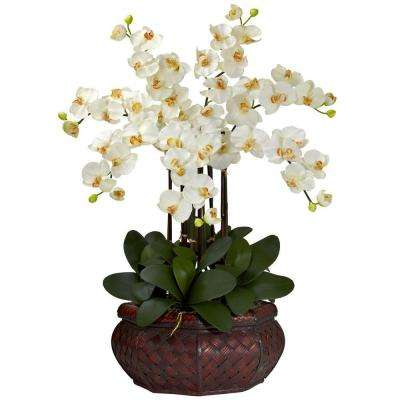 30 in. H Cream Large Phalaenopsis Silk Flower Arrangement