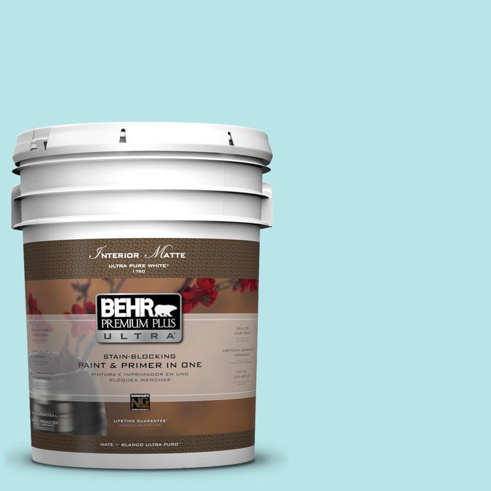 BEHR Premium Plus Ultra 5-gal. #500A-2 Refreshing Pool Flat/Matte Interior Paint-DISCONTINUED