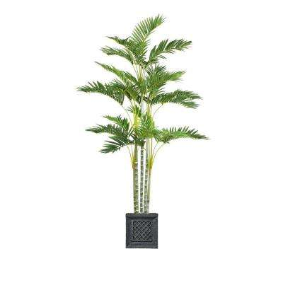 74 in. Tall Palm Tree in Planter