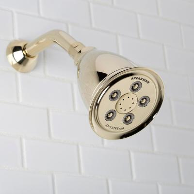 3-Spray 4.1 in. Single Wall Mount Fixed Adjustable Shower Head in Polished Brass