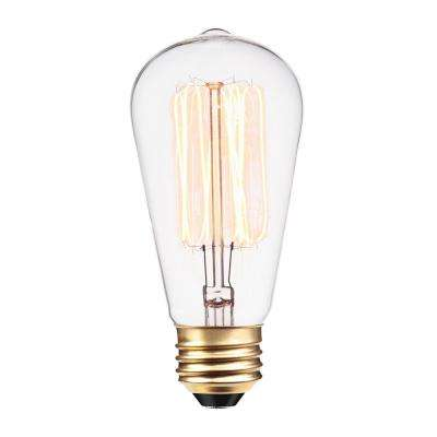 60-Watt Incandescent S60 Vintage Squirrel Cage Medium Base Light Bulb