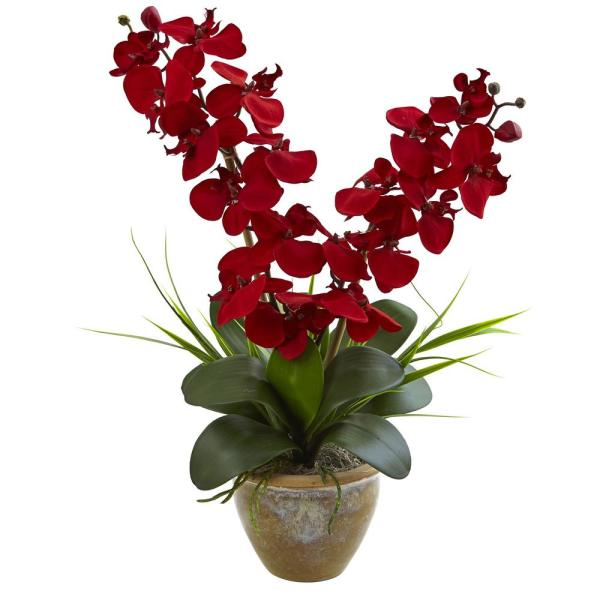 Nearly Natural Double Phalaenopsis Harvest Silk Orchid Arrangement