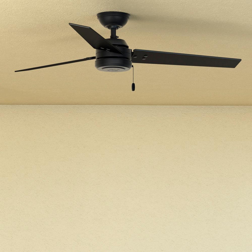 Cassius 52 in. Indoor/Outdoor Matte Black Ceiling Fan