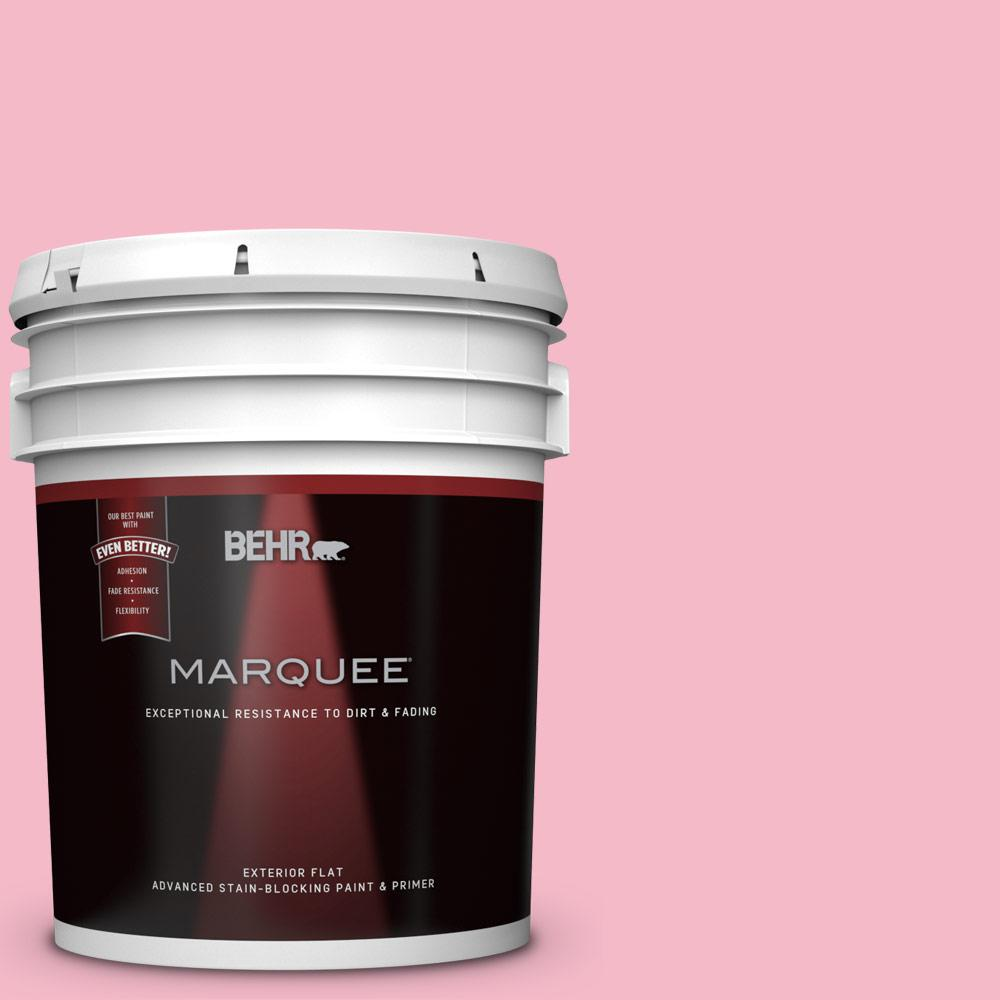 BEHR MARQUEE 5-gal. #120C-2 Pink Punch Flat Exterior Paint-445405 ...
