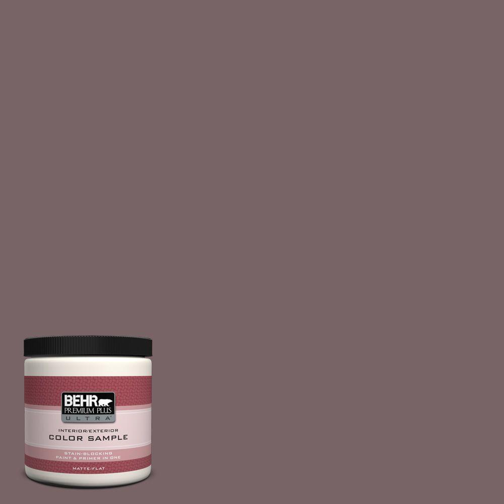 BEHR Premium Plus Ultra 8 oz. #PPU1-3 Tibetan Temple Interior/Exterior Paint Sample