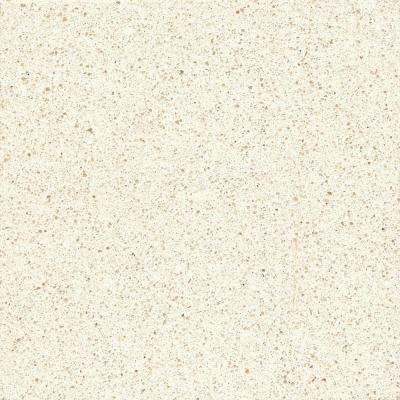 2 in. x 4 in. Quartz Countertop Sample in White North