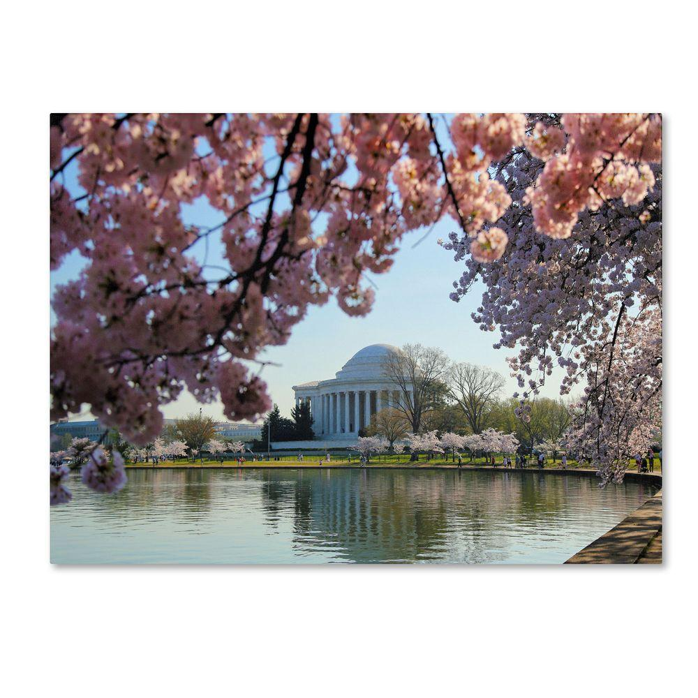 null 22 in. x 32 in. DC 3 Canvas Art