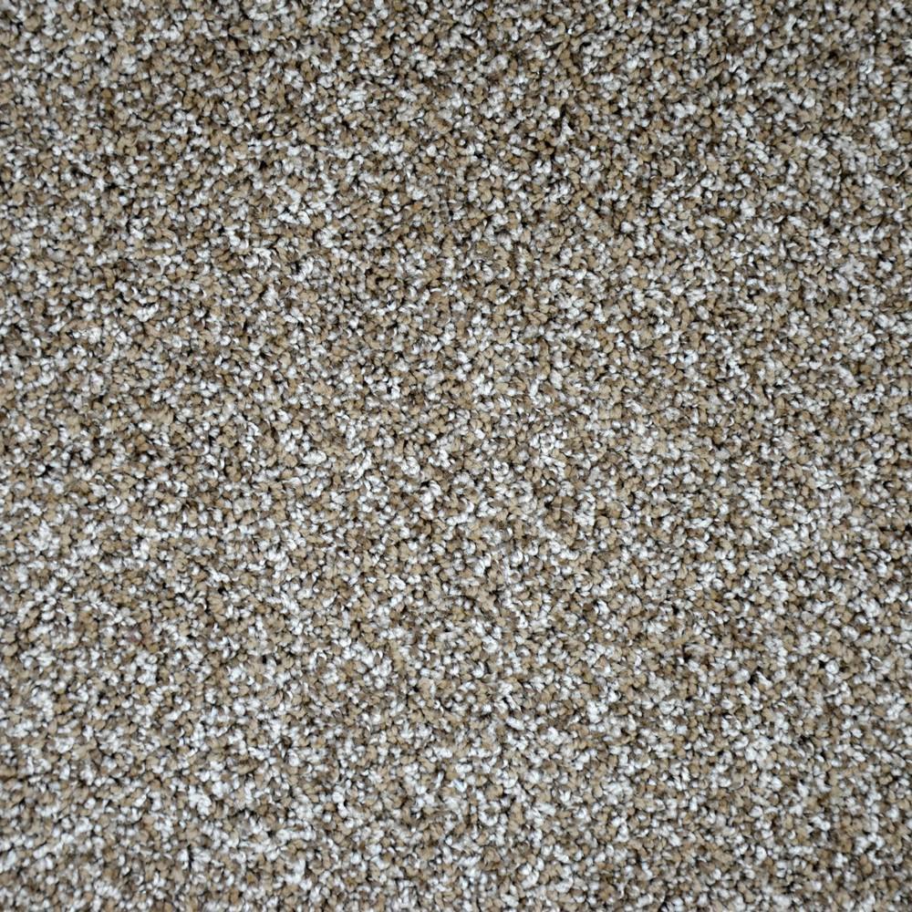 Carpet Sample - Precipice - Color Ridgeland Texture 8 in. x 8 in.