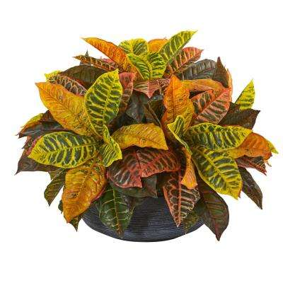 17 in. Garden Croton Artificial Plant in Decorative Bowl (Real Touch)