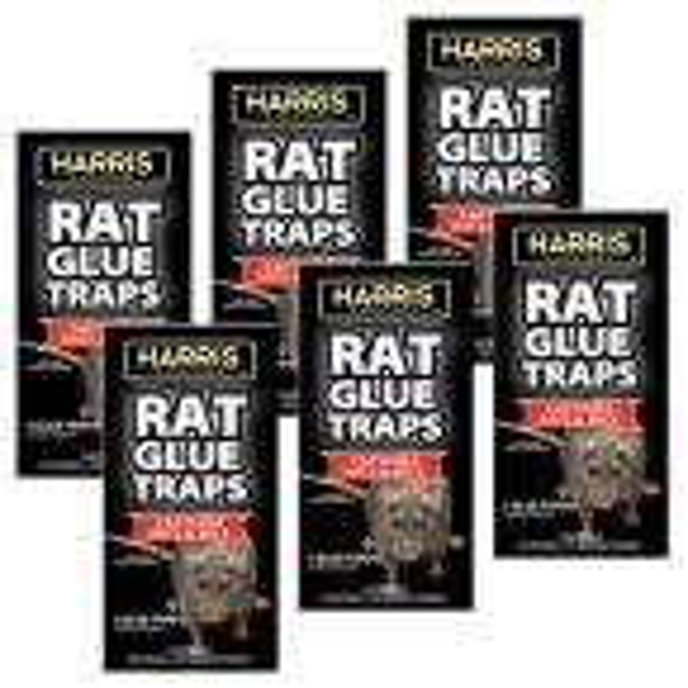Pre-baited Rat Glue Traps (6-Pack)