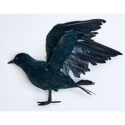 10 in. Feathered Crow
