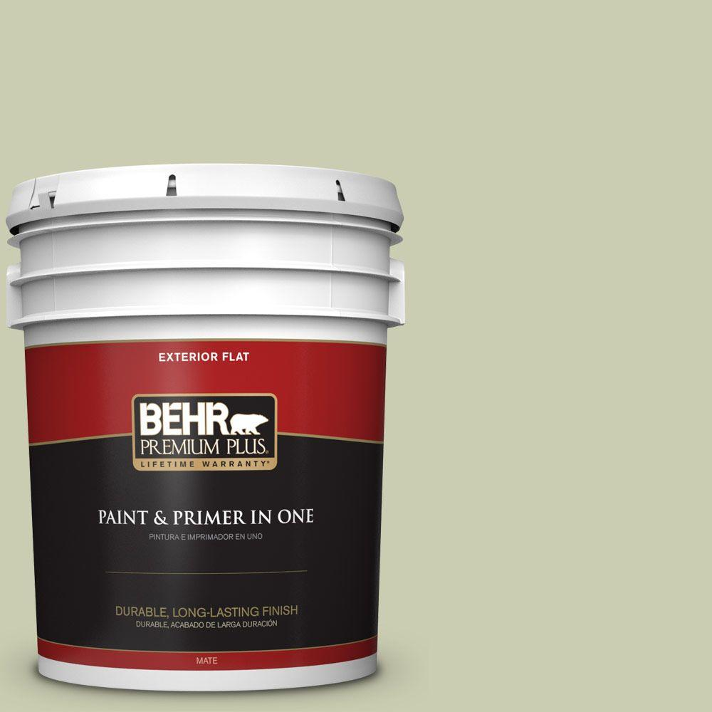 5-gal. #BIC-13 Chilled Cucumber Flat Exterior Paint