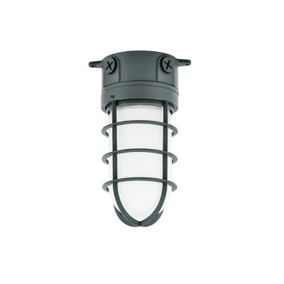 150-Watt Gray Indoor/Outdoor Area Incandescent Vapor Tight Light