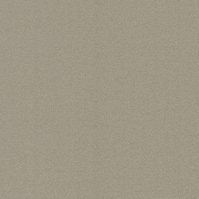 Sand Taupe Subtle Texture Wallpaper
