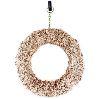 Shop Succulents Sphagnum Moss Living Wreath 11 in. Round (120)