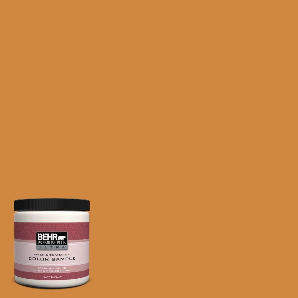 BEHR Premium Plus Ultra 8 oz. #290D-6 Acorn Interior/Exterior Paint Sample